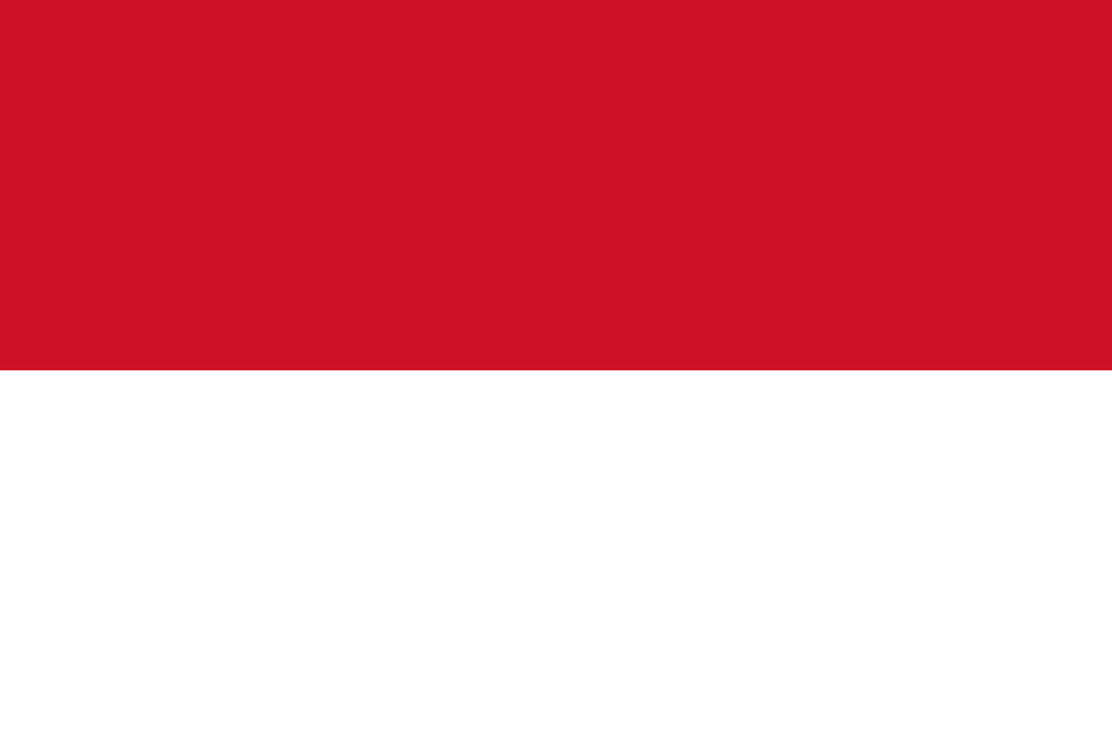 BILAN INDONESIE